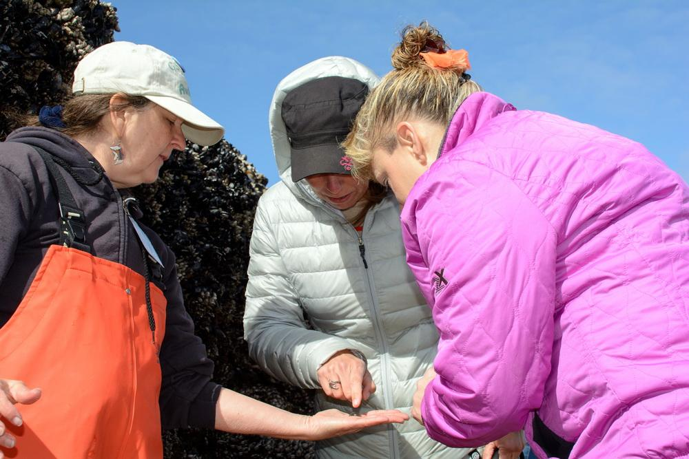 Fawn Custer, left, leading a previous tidepool clinic.\Photo by Alex Derr.