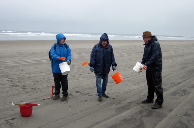 A previous survey taking place at the Fort Stevens site.\Photo by Ed Joyce.